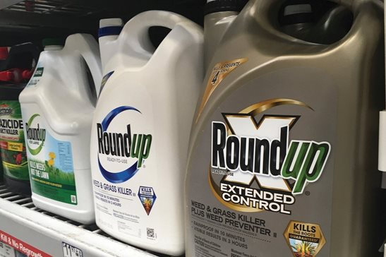 Containers of Roundup on a store shelf. A Northern California jury ordered agribusiness giant Monsanto Co. to pay a combined $2.05 billion to a couple who claimed the company's popular weed killer Roundup Ready caused their cancers. Monday's verdict was Monsanto's third such loss in California since August. Monsanto owner Bayer said it would appeal.